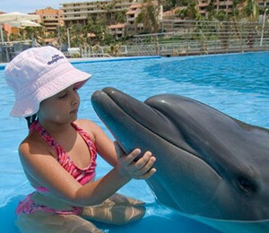 Cabo San Lucas Dolphin Kids