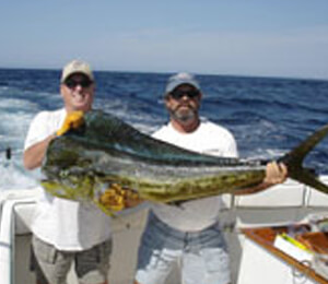 Cabo San Lucas Light Tackle Fishing