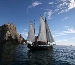 Cabo San Lucas Sailing Charters